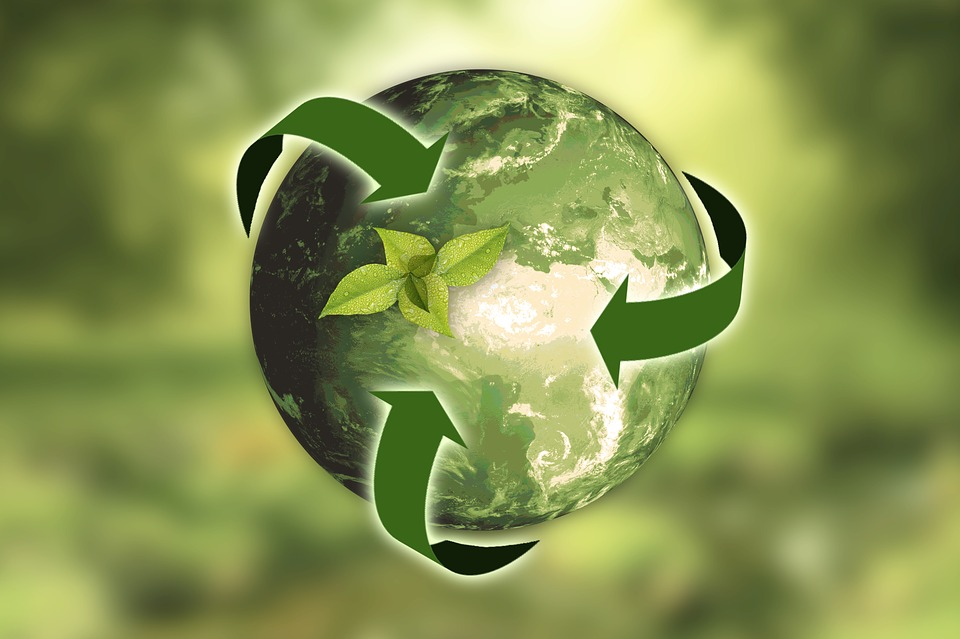 Eco-sustainable system