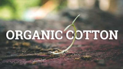 Organic cotton sprout cover